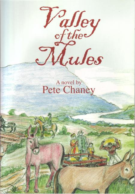Valley of the Mules cover